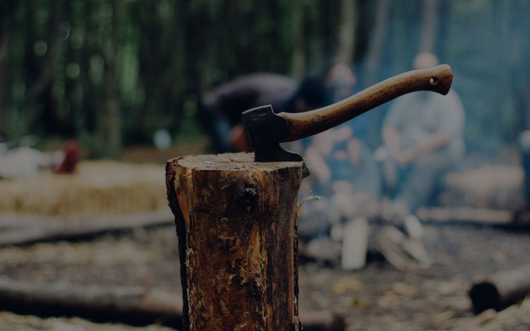 Dlaczego ciężka praca i konsekwencja popłacają
